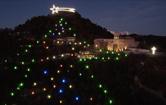 Albero di Natale più grande del Mondo